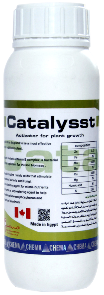 catalysst