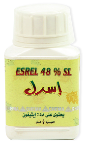 esrel-01
